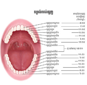 chidlren-teeth_roomchang-dental-clinic